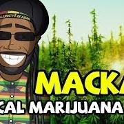 Macka B