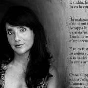 Olivia Sellerio